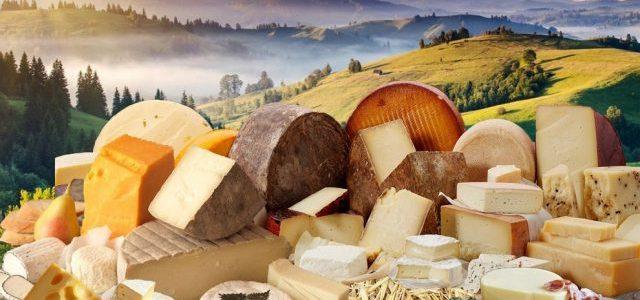 Як зберігати сир? Поради швейцарських сироварів.