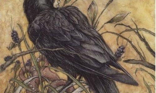 Які птахи з давніх-давен вважалися провісниками нещастя